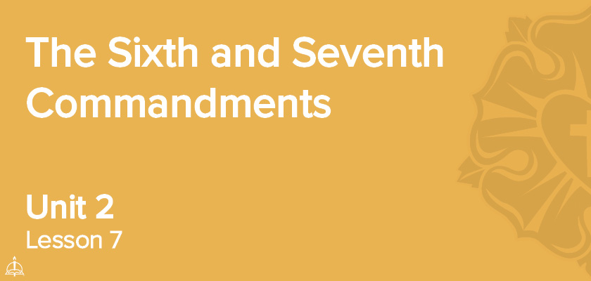 Lesson 7 - The Sixth and Seventh Commandments | CPH 30-Week Confirmation Curriculum