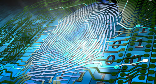 Fingerprint embedded as routing