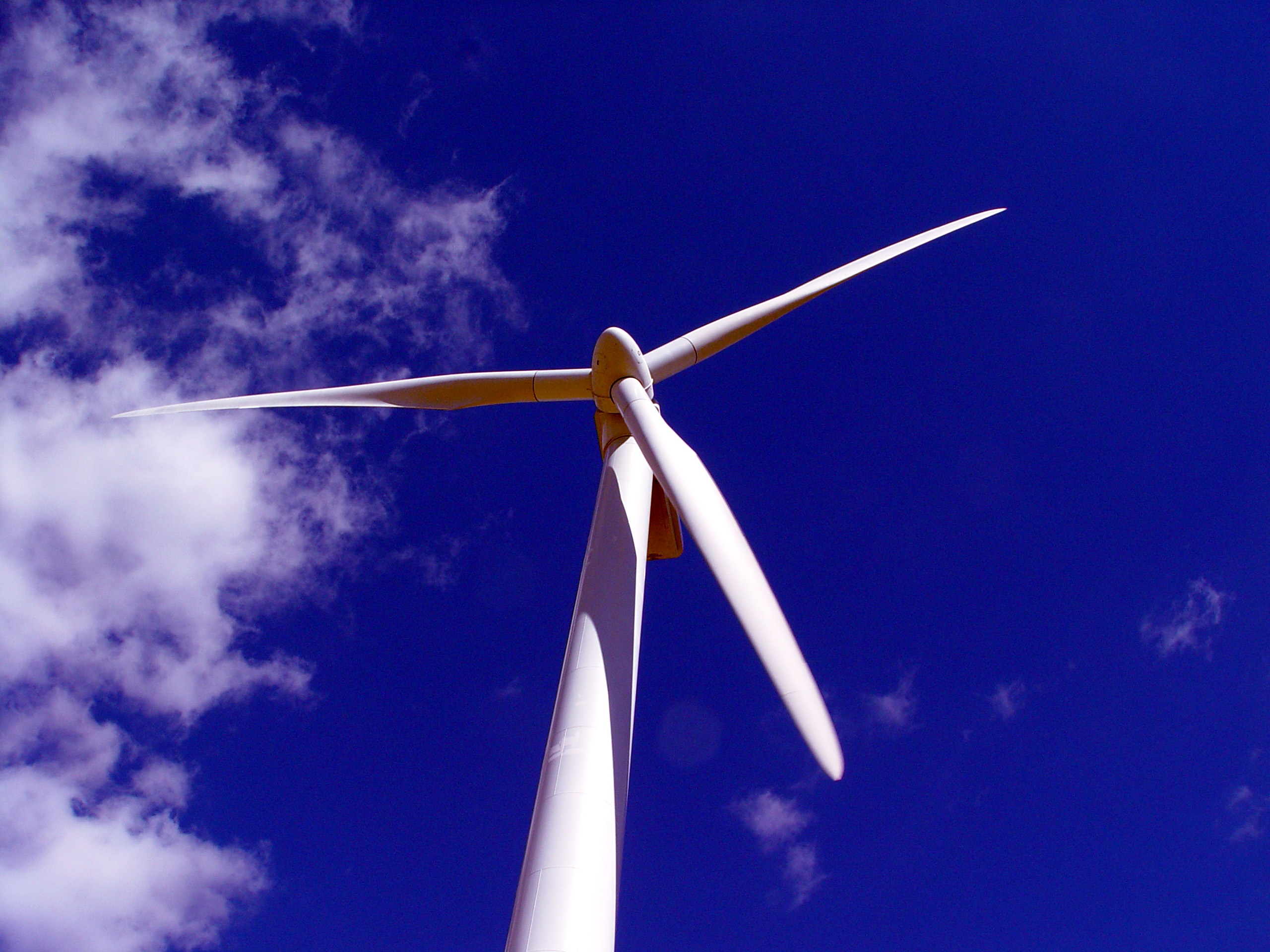 Wind turbine blades are made from fiberglass composites and adhesives