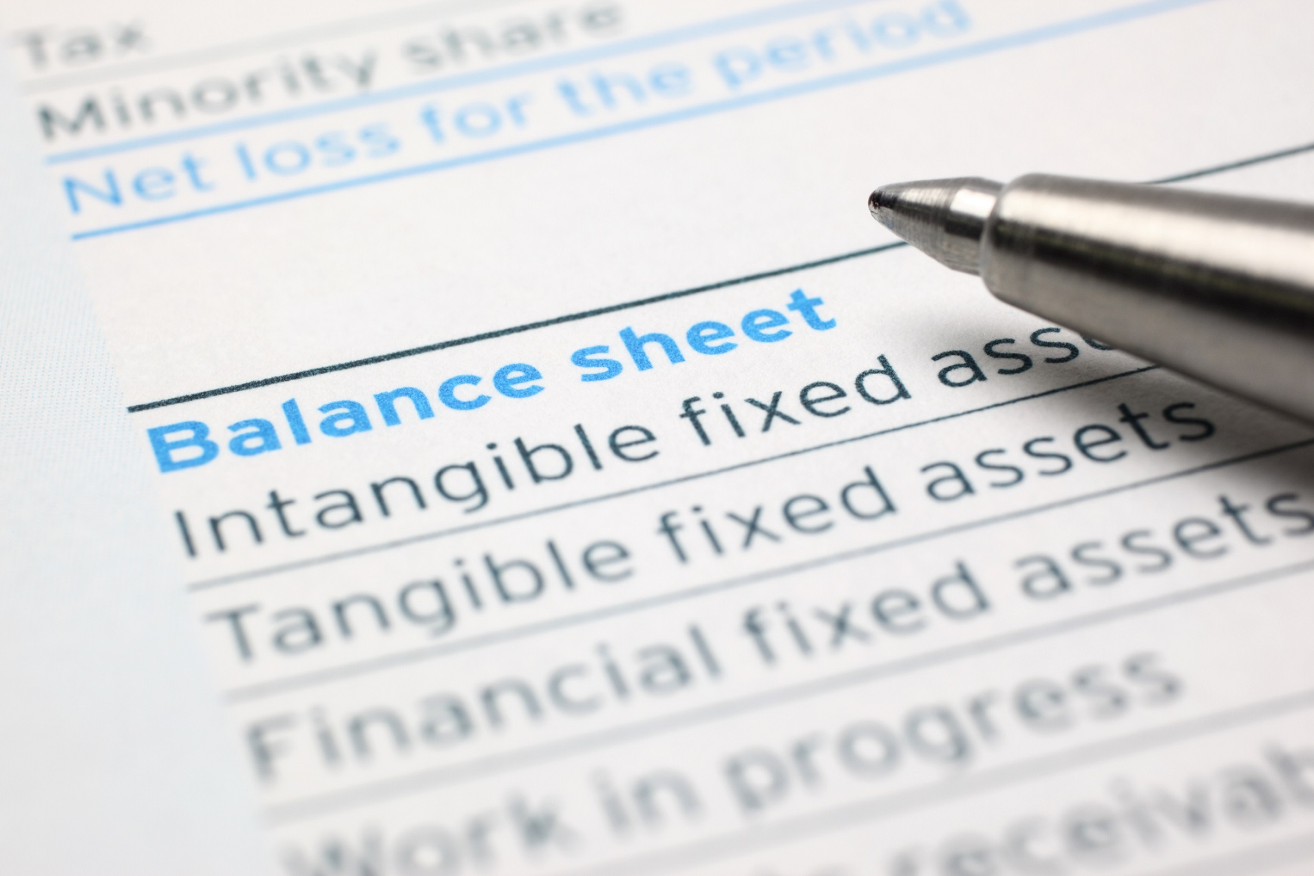 balance sheet with lines for profit and loss