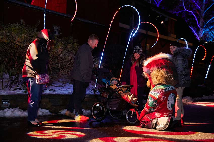 Visitors are delighted to journey down Candy Cane Lane