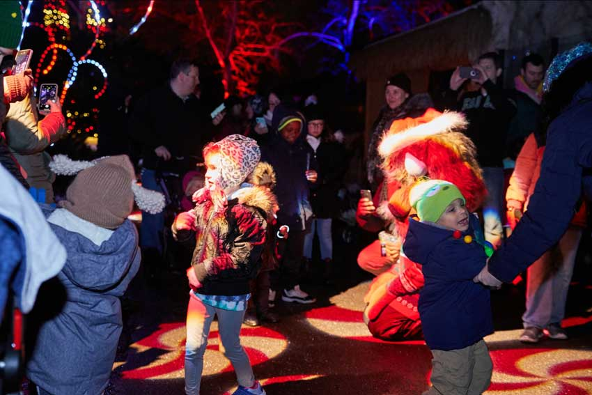 Wild Lights features a magical tree-lined path and Candy Cane Lane