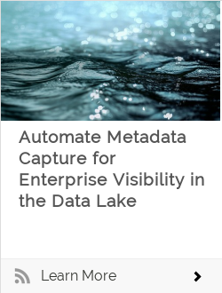 Automate Metadata Capture for Enterprise Visibility in the Data Lake