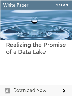 Realizing the Promise of a Data Lake