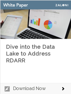 Dive into the Data Lake to Address RDARR