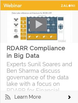 RDARR Compliance in Big Data
