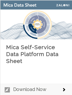 Mica Self-Service Data Platform Data Sheet