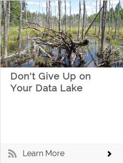 Don't Give Up on Your Data Lake