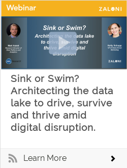 Sink or Swim? Architecting the data lake to drive, survive and thrive amid digital disruption.