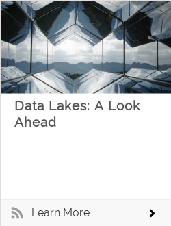 Data Lakes: A Look Ahead