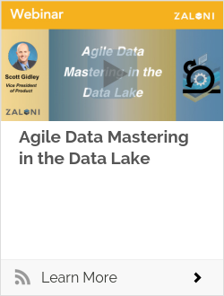 Agile Data Mastering in the Data Lake