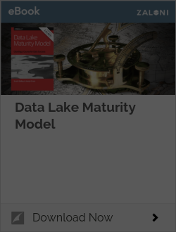 Data Lake Maturity Model