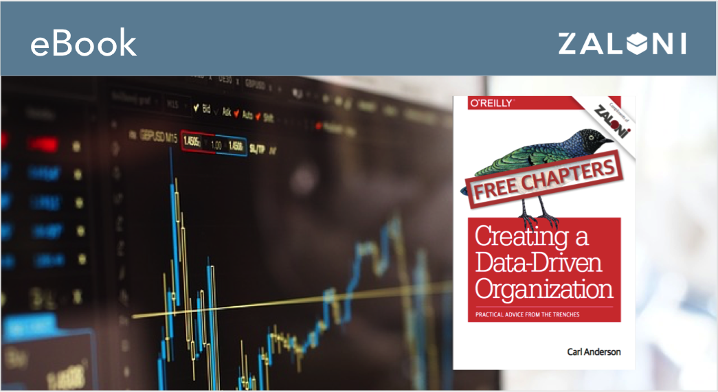 Creating a Data-Driven Organization Chapter Preview