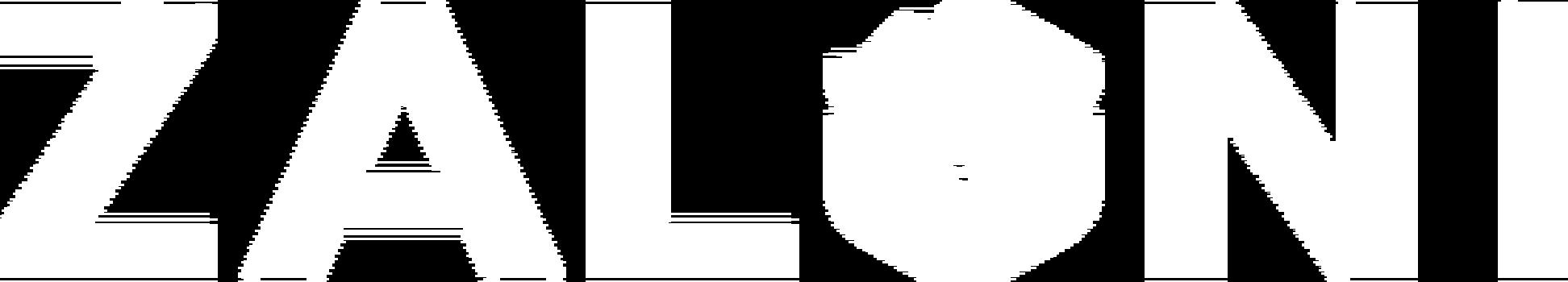 Zaloni logo