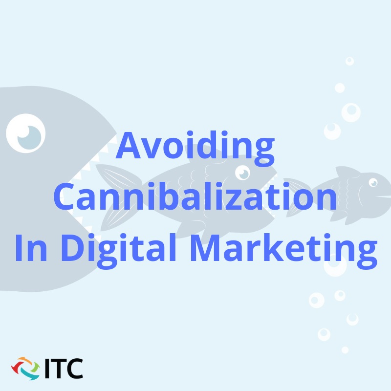 avoiding cannibalization in digital marketing image
