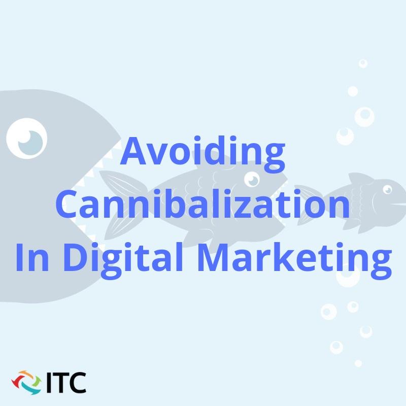 avoiding cannibalization in digital marketing image