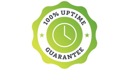 100% Uptime Guarantee