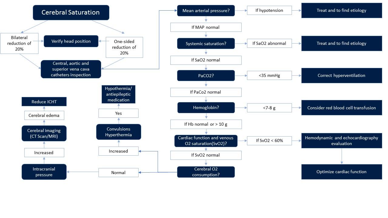Denault and Murkin et al. interventional algorithm to assist clinicians in reversing cerebral desaturation event
