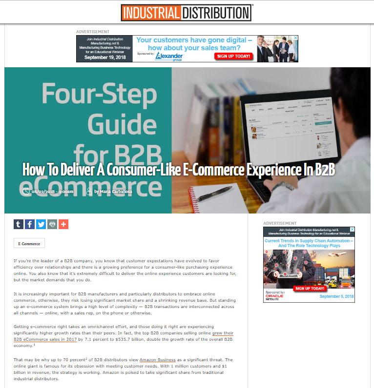 Screenshot of page from the 4-step guide for B2B ecommerce.