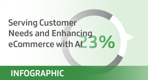 Serving Customer Needs and Enhancing eCommerce with AI