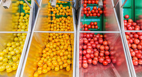 A Recipe for Intelligent Commerce in Foodservice Distribution