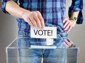Voting Smart