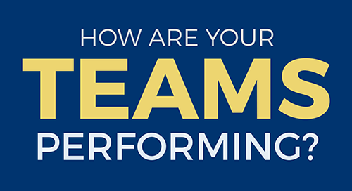 Checklist on the Elements that Impact Team Performance