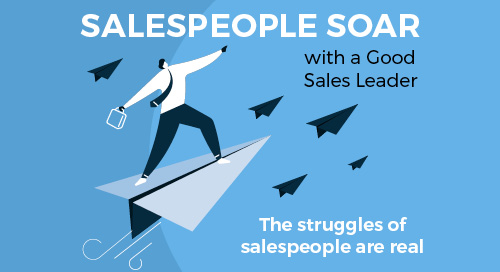 Salespeople Soar with a Good Sales Leader