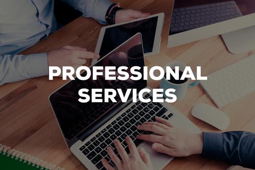 Computerbildschirm mit dem Schriftzug Professional Services
