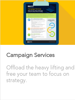 Campaign Execution Services