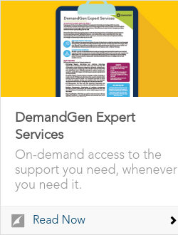 DemandGen Expert Services