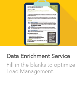 Data Enrichment Service