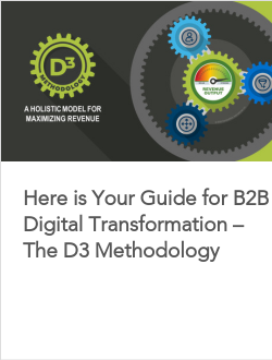 Here is Your Guide for B2B Digital Transformation – The D3 Methodology