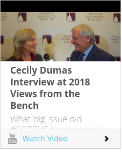 Cecily Dumas Interview at 2018 Views from the Bench