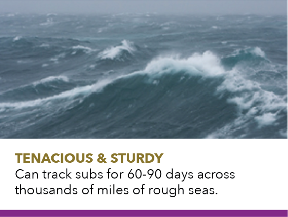 Tenacious & sturdy, can track subs for 60-90 days