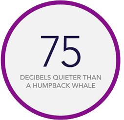 75 decibels quieter than a humpback whale
