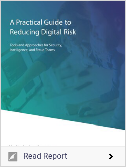A Practical Guide to Reducing Digital Risk