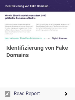 Identifizierung von Fake Domains