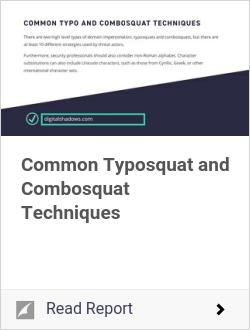 Common Typosquat and Combosquat Techniques