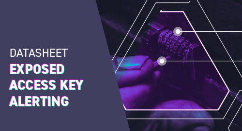 Exposed Access Key Datasheet