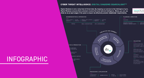 Digital Shadows and the Intelligence Cycle