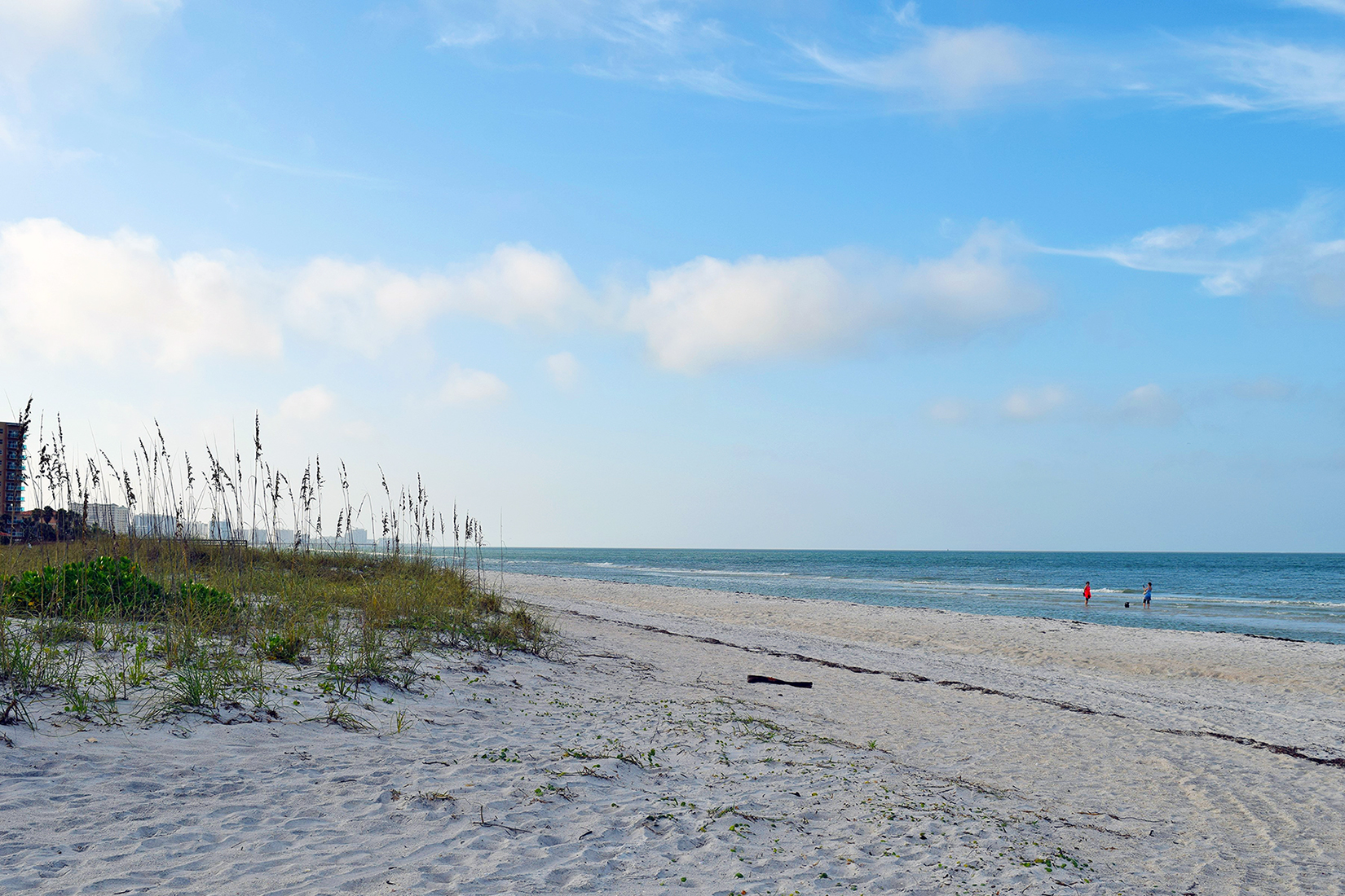 Published in Florida Water Resources Journal: Keys to Planning, Designing, and Permitting Resilient Coastal Restoration Projects