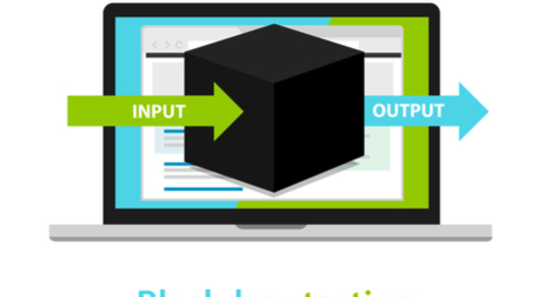 imagen de un proceso de entrada y salida de caja negra