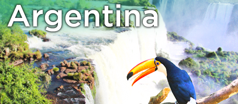 "Toucan at Iguazu Falls with text ""Argentina"" superimposed over it"