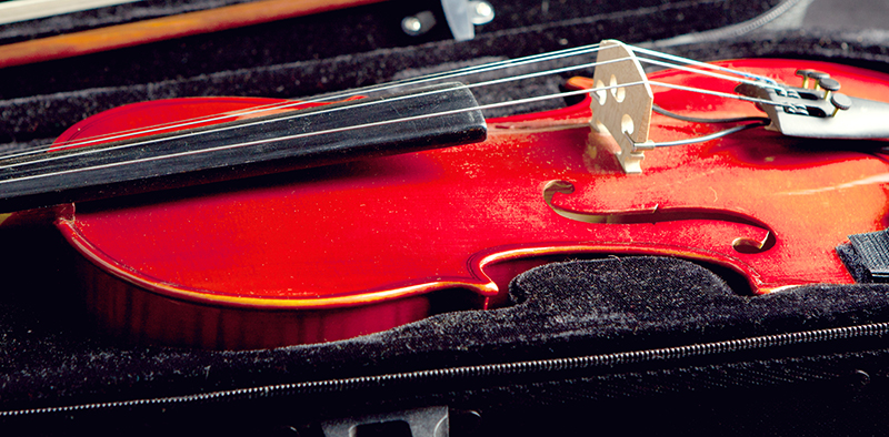 Violin in hard case