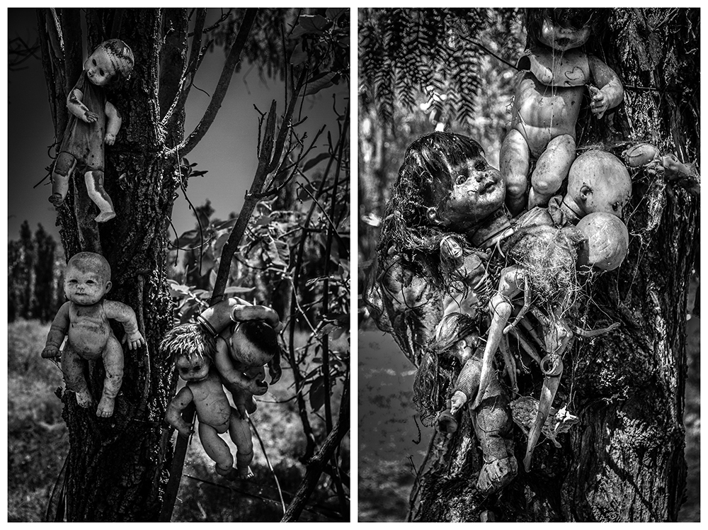 Dolls hanging from trees | Photo Credit: kevin53/Flickr