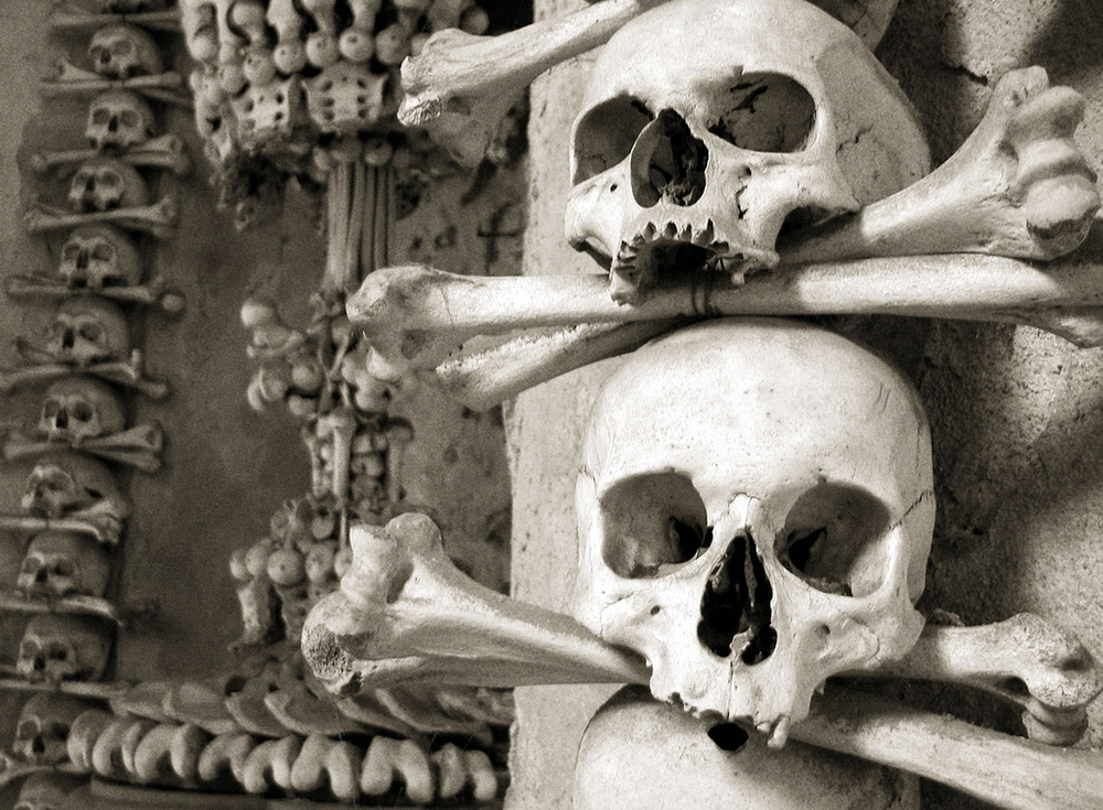 Skulls at the Sedlec Ossuary | Photo Credit: izarbeltza/Flickr