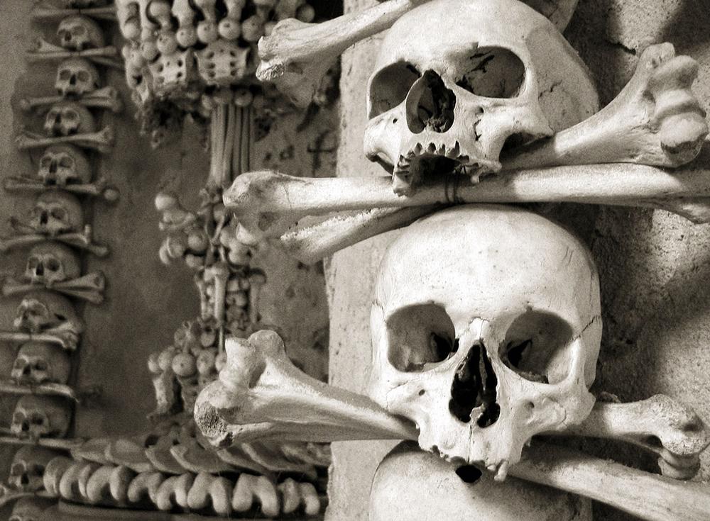 Skulls at the Sedlec Ossuary   Photo Credit: izarbeltza/Flickr