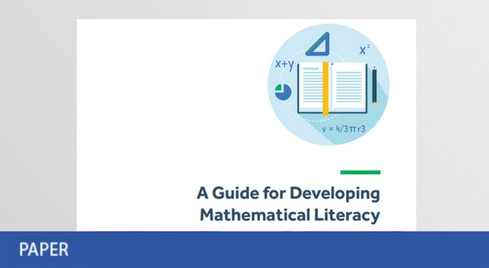 A Guide for Developing Mathematical Literacy