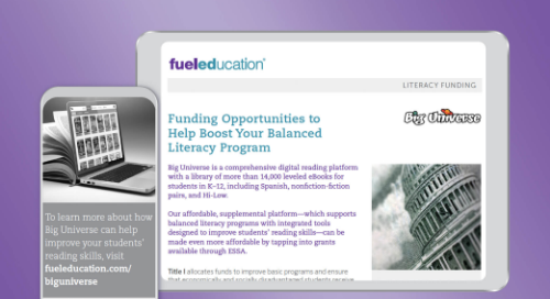 Literacy Funding Flyer